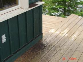 Bat Guano falling from the soffits